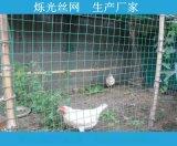 养鸡用铁丝网多少钱一米 河北养殖浸塑荷兰网生厂家