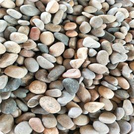河北石茂供应机制鹅卵石 水处理鹅卵石 园艺鹅卵石