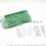 三維植草網使用規格/三維植被網廠家