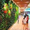 仿真植物牆一平方價格是多少