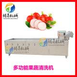 供應果蔬氣泡清洗機 廠家定製淨菜清洗設備