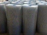 定做大丝电焊网 中国大丝电焊网