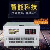 大泽动力 TOTO12 12kw汽油发电机报价