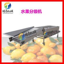 水果分选机 滚杠滚桶式核桃分选机 自动大蒜分选机