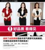 厦门职业装厂家批发韩版职业女裙套装学生面试装