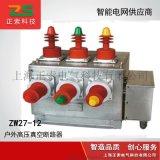 戶外高壓真空斷路器ZW27-12/630-20