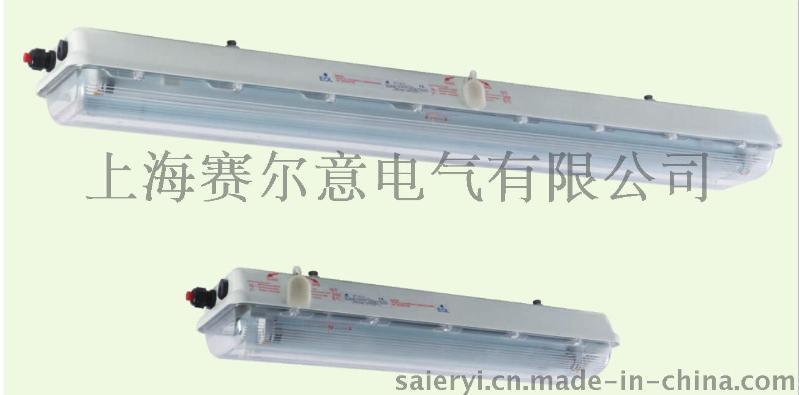 BAY51-Q36*2防爆熒光燈ATEX認證