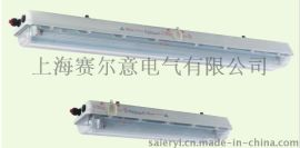 BAY51-Q36*2防爆荧光灯ATEX认证