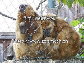 长尾猴隔离网-不锈钢防护网-长尾猴场馆围网