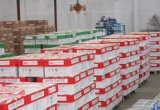 供应大批国产和进口复印纸