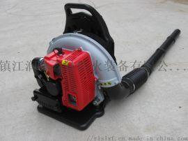 镇江润林EB650背负式风力灭火机  风力吹雪机