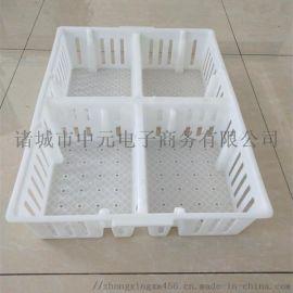 塑料鸡苗转运筐小鸡苗箱洗筐机可用四格鸡苗运输筐