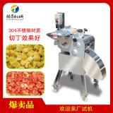 香菇切丁机 多功能瓜果切丁机 果蔬专业切丁设备