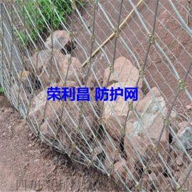 邊坡防護網廠家 綠化防護網價格 隧道防護網安裝