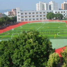 承接无锡体育运动场工人草坪一体化施工
