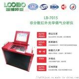 LB-3010非分散红外烟气分析仪 微电脑型