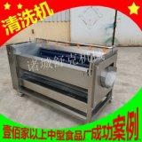 厂家直销红薯土豆去皮清洗机 商用莲藕毛辊磨皮机
