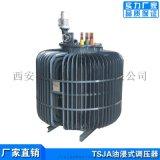 持續可調0-650V油浸式感應調壓器500KVA