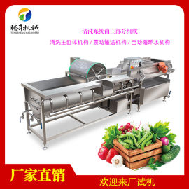 涡流清洗机 多功能涡流洗菜机 配送中心果蔬清洗机