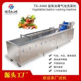 蔬菜臭氧消  泡清洗機器TS-X400