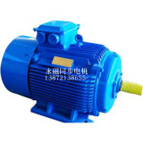 大功率永磁同步电机TYBZ315L-4/200KW