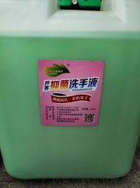 威德利(WA30)护理型洗手液 桶装 抗菌洗手液