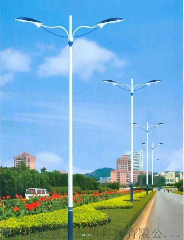 农村太阳能路灯 5米6米7米 户外道路景观庭院灯