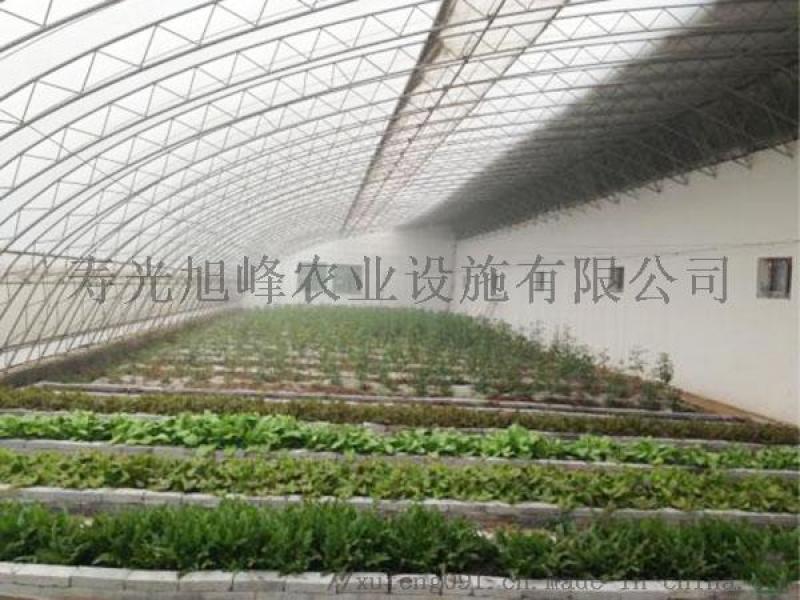 蔬菜日光温室、日光蔬菜大棚、寿光旭峰生产承建