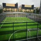 厂家直销 仿真人造草坪 足球场人造草 幼儿园人造草
