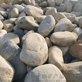 沧州永顺直销20-40 厘米天然鹅卵石