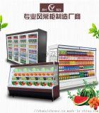陕西风幕柜 冷风柜 超市冷柜 冰柜 西安 厂家