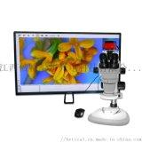 XTL-6745TJ1-950HK高清4K顯微鏡