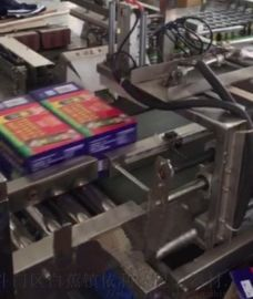 珠海排骨面自动化装箱机灵活性高