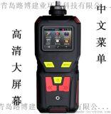 燃氣體檢測儀LB-MS4X泵吸單一