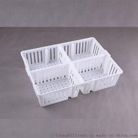 加高塑料鸡苗运输箱 雏鸡运输箱 鸡鸭苗运输箱