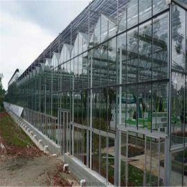 玻璃智能温室大棚 厂家直销 质量保证