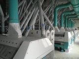 500噸麪粉成套設備