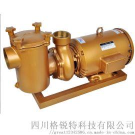 铜泵游泳池循环过滤水泵水处理设备
