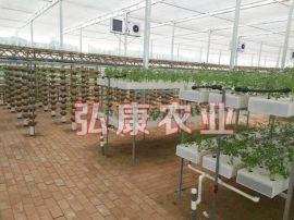 新型智能温室 无土栽培大棚 纹络型温室