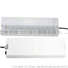 大促疏散应急壁灯IP65防水消防标志灯3W-8W