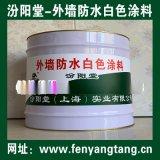 外墙防水白色涂料、生产销售、厂家直供