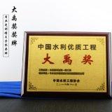 水利工程大禹奖奖牌定做 广州市西江引水工程奖牌