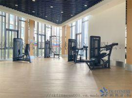 进口速尔E35L家用椭圆机健身房健身器材