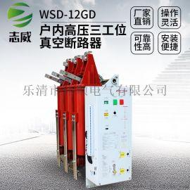 户内一体式三工位真空断路器WSD-12GD