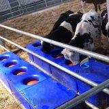 滚塑一次成型奶牛专用饮水槽