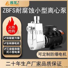 ZBFS小型卧式自吸排污泵 定制316不锈钢材质