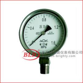 布莱迪YTHN-100.(531)全不锈钢压力表