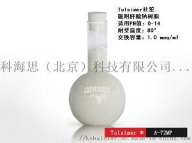 大孔强碱性阴离子,吸附肝素钠树脂A-72MP