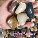 本格大量供应机制白色鹅卵石 雨花石 抛光打蜡鹅卵石