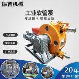 山東青島灰漿軟管泵臥式軟管泵廠家現貨價格